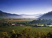 Bodegas und Weinberge von Errazuriz, Valle del Aconcagua, Chile