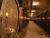 Alte Weinfässer im Keller des Weinguts von Bühl, Deidesheim