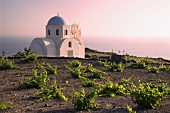 Kapelle & Weinberg, Mesa Pigadia, Nahe Akrotiri, Santorini