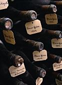 Alte Burgunder aus Vosne-Romanée und Beaune, Côte d'Or