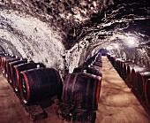 Weinfässer im Kereskedöhaz von Tokaj, Ungarn