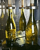 Abfüllanlage, Chapel Down Wines, Tenterden Vineyards, England