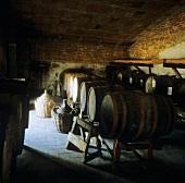 Vin santo (sweet Italian wine) in cellar, Tuscany