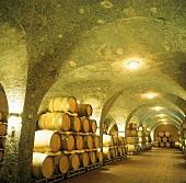 Weinkeller, Tenuta Corte Pavone, Montalcino, Toskana, Italien