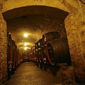 Wine cellar in Castel Sallegg, Kaltern, S. Tyrol