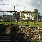 Castel Ringberg, Elena Walch Winery, S. Tyrol, Italy