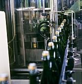 Maschinelles Aufbringen von Agraffe (Draht) auf Sektflaschen