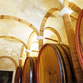 Barrels, Fattoria di Felsina, Castelnuovo Berardenga, Tuscany
