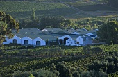 The J.C. Le Roux Wine Estate, Stellenbosch, S. Africa