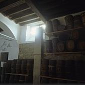 Fässer mit Vin Santo, Fattoria Selvapiana, Rufina, Toskana
