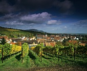 View of Ranschbach (Rhine Palatinate, Germany)