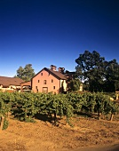 Trefethen Vineyard, Napa, Napa Valley, California, USA