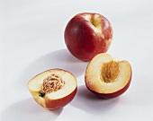 Nectarines variety 'Big top' (Prunus persica var. nucipersica)