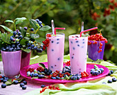 Blueberries and blueberry shakes