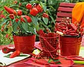 Paprika und Pepperoni in roten Emailleeimern