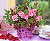 Raspberries, roses ('Bonica' and 'The Fairy') in pink basket