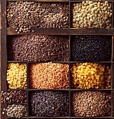 Lentils and beans in typesetter's case