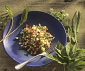 Vegetable salad with fresh wild herbs