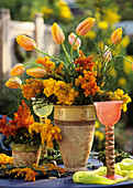 Spring arrangement of mimosa and tulips