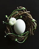 An ostrich egg in an Easter nest of twigs and ranunculus