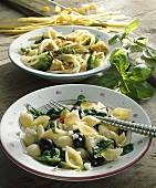 Conchiglie with spinach, bucatini with broccoli
