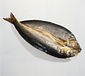 Kippers (smoked herrings, Scotland)