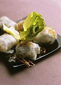 Banh cuon (spring rolls, Vietnam)