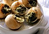 Snails au gratin