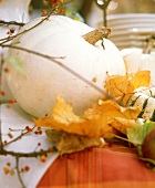 White pumpkin head with autumn leaves