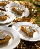 Pieces of pumpkin pie with whipped cream at autumn buffet
