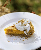 A piece of pumpkin pie with whipped cream on white plate