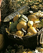 Assorted Pumpkins and Squash in a Basket; Wooden Sign