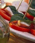 Spiedini capresi (Tomaten-Mozzarella-Spiesschen, Italien)