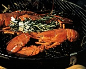 Lobster on the Grill with Herbs