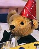 Teddy bear with hat