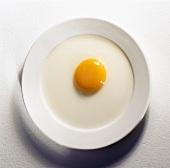 Altes aufgeschlagenes rohes Ei mit flach verlaufendem Dotter