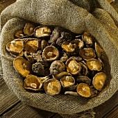 Many dried Tongku mushrooms (Donggu) on jute sack