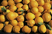 Fresh Oranges with Leaves at the Market