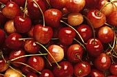 Several Red and White Cherries