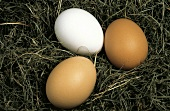 Two Brown and One White Egg on Grass