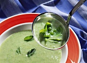 Mangetout soup with mint leaves