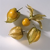 Four Cape Gooseberries