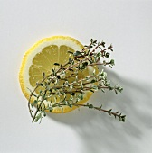 A Sprig of Lemon Thyme with a Slice of Lemon