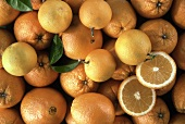 Several Oranges; Cut and Whole