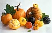 Several types of pumpkin