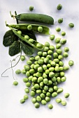 Shelled peas and pea pods