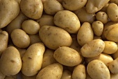 Potatoes (Italian early potatoes)