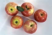 Four Gala Apples
