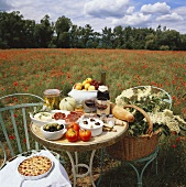 Table in poppy field with wine, bread, vegetables, fruit etc