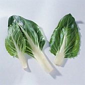Three individual beet leaves